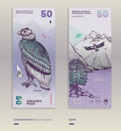 Beautiful Redesign of the Argentinean Bills – Gilda Martini & Gabriela Lubiano imagined a new design of the Argentinian beauty, the Pesos. The was inspired by the diversity of the fauna and flora. Currency Card, Money Notes, Money Tattoo, Martini, Notes Design, Money Pictures, Typography Poster, Brochure Design, Graphic Design Inspiration