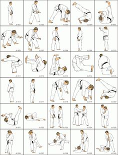 jiu-jitsu techniques - Google Search