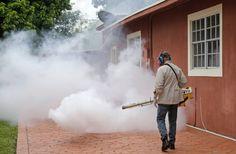 Declaran a zona de Miami libre del zika tras fumigaciones -...