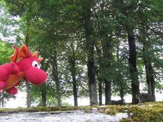 Ich fliege... miros-reisen.blogspot.de