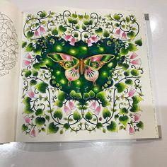 Secret Garden Coloring Book, Coloring Book Art, Colouring Pages, Adult Coloring, Zen Colors, Johanna Basford Coloring Book, Butterfly Illustration, Color Magic, Colouring Techniques
