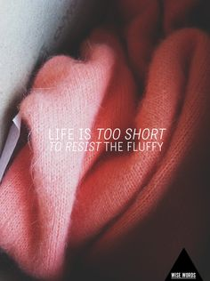 wise words for the weekend // life is too short to resist the fluffy!