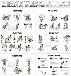 7 Days Workout Plan