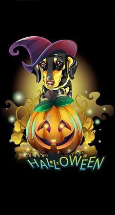 Halloween 2, Dachshunds, Fictional Characters, Art, Diy Dog, Art Background, Dachshund, Weenie Dogs, Kunst
