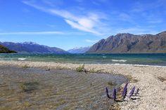 Neuseeland – Vielfalt der Südinsel, Kalenderblatt Februar: Lake Hawea