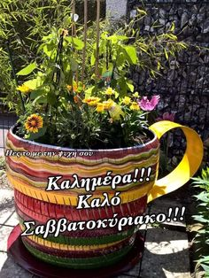 Funny Images, Planter Pots, Humorous Pictures, Funny Pics, Imagenes De Risa, Funniest Pictures, Funny Pictures, Funny Photos