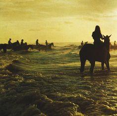 Vinyle : Holy Fire - Foals