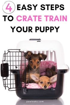 Learn how you can crate train your puppy in 4 simple steps! Training a puppy to use a crate is easier than you might think. It includes crate training your puppy at night, crate training while being at work, and creating your own crate training schedule. With these simple crate training tips, you will set up a great foundation for potty training and prevention of separation anxiety. #cratetraining #dogs #puppies Kennel Training A Puppy, Training Your Puppy, Potty Training, Training Schedule, Training Tips, Puppy Schedule, Puppy Crate, Puppy Pads, Toy Puppies