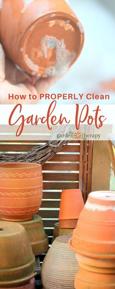 Garden pots can contain minerals, pests, bacteria, and fungus that can harm your plants before they even get a good start. Learn how to clean them properly. #gardentherapy #plantcare #flowerpot #terracotta #gardening