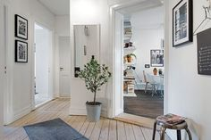 #White #hallways Of The Best Traditional Decor Style