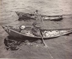Fishing dories.