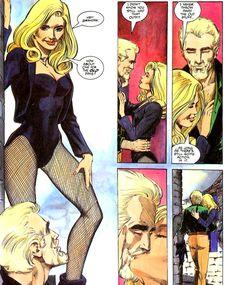 Green Arrow & Black Canary - Mike Grell
