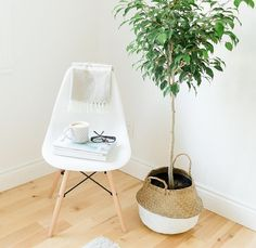 Decoration, Hanging Chair, House, Furniture, Home Decor, Home Ideas, Green, Decor, Decoration Home