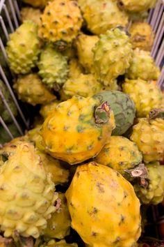 Ecuadorian Weight Loss Produkte