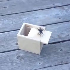 When you remove the lid, the animals in the wooden box will jump out. An amazing box with vivid animals inside. Great toys, make fun of, let others laugh. Can also be your home decorations. Use this trick box to fool your friends on April Fool's Day. Spider Prank, The Animals, Good Pranks, Kids Pranks, Easy Pranks, School Pranks, Simple Pranks, Sleepover Pranks, Funny Pictures