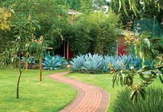 Paisagismo com jardim tropical - Paisagismo - Plantas, Flores e Jardins