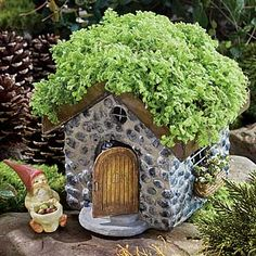 03592-w.300pxc-025_PRw_[64310]_cottage_stone_living_roof_miniature_gnome