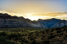 Red Rock Canyon Park - Red Rock, NV ©CJPD Studios