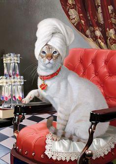Cat pedicure. Tatiana Doronina Art, Russia