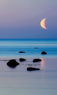 Moonlight over rocks.
