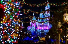 Ultimate 2014 Disneyland Christmas Guide - Disney Tourist Blog