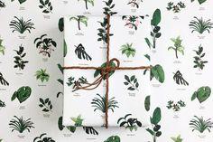 נייר אריזה/יצירה : Botanic