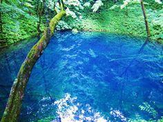 世界遺産の中でも自然遺産に分類される白神山地。十二湖とは、青森、秋田の白神山地で江戸時代に発生した大地震による山崩れで、崩山(くずれやま)の崩壊で川がせきとめられできたと言われる場所。どうしてブルーになっているのかまだ解明されていない神秘の湖の魅力をご紹介します・
