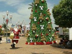 Sonhos de Natal - Santa Fé do Sul