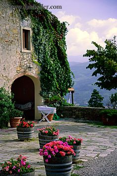 ivy-covered-stone-country-house- flowers, houses, images, italy, ivy, stones, tuscany