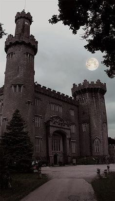 nice This is a picture of Charleville Forest castle, Ireland. It is rumored to be hau...