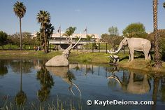 """Urban LA.  Free:  The La Brea Tar Pits in Hancock Park (next to the LA County Museum of Art).  Greatest source of prehistoric fossils ever excavated; """"National Natural Landmark"""""""