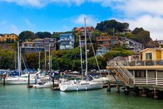 Bay Areas Luxury Housing Market Remains Strong as Summer Rolls Along