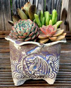 Pottery Designs, Pottery Ideas, Pottery Handbuilding, Clay Ideas, Clay Pots, Ceramic Pottery, Cactus, Planters, Corner