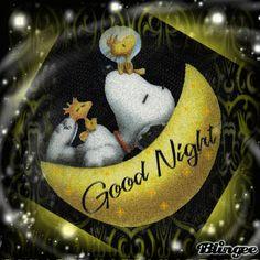 Η   ΕΦΗΜΕΡΙΔΑ   ΤΩΝ    ΣΚΥΛΩΝ: Καληνύχτα από τον Σνούπυ...