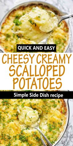 Oven baked creamy cheesy scalloped potatoes are a traditional potato recipe that is quick to prepare. Thinly slice potatoes in a cheesy cream sauce make the perfect side dish for Thanksgiving and Christmas. Serve with your favourite roast dinner! #potatorecipes @sweetcaramelsunday