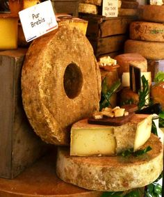 Wheel cheese , Provence market - Photo from Cooking in Provence