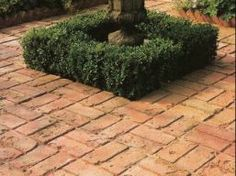 Antique_Brick_Paving.jpg 257×192 pixels
