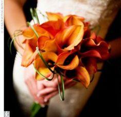 flame orange calla lilies