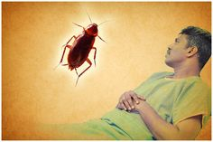 #Jammu GMC patients sharing there bed with cockroaches. Watch this SHOCKING Video - http://u4uvoice.com/?p=230517