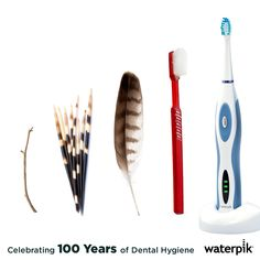 Some of the earliest toothbrushes, found around 1600 B.C. consisted of tree twigs, bird feathers, small animal bones, and porcupine quills.