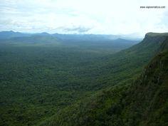 Viajes Erráticos: Cerro El abismo / Gran Sabana / Estado Bolívar / VENEZUELA