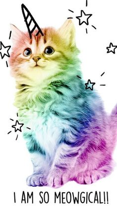 Search free Ringtones on Zedge and personalize your phone to suit you. Iphone Wallpaper Unicorn, Kitten Wallpaper, Cute Pokemon Wallpaper, Kawaii Wallpaper, Unicorn Backgrounds, Wallpaper Wallpapers, Unicorn Cat, Cute Unicorn, Kittens Cutest