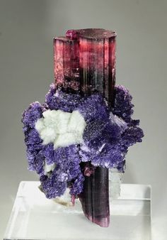 Tourmaline with Lepidolite and Feldspar, Oceanview Mine, Pala, San Diego Co., California, USA Size: 7.2 x 4.8 x 4 cm