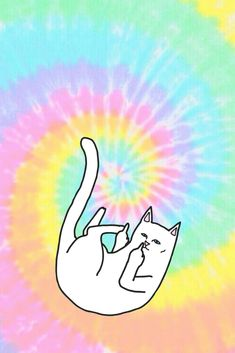 Ripndip iphone wallpaper #ripndip #middle #finger #cat #wallpaper #iphone #tie #dye