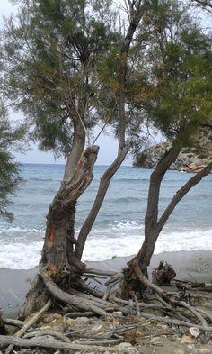 Galissas Beach (Παραλία Γαλησσά) in Σύρος, Κυκλάδες