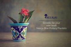 #handmade #ceramic #bluepottery #planters  Add some instant warmth to your house with Neerja Blue Pottery Planters! Shop the collection now at https://www.neerja.com/category/pottery-products