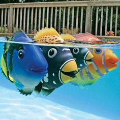 Swimming Pool Toys Janesville & Lake Geneva WI