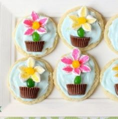 Marshmallow Flower Cookies are easy to make and perfect for Spring baking! Everyone loves these cute treats topped with marshmallow flowers with a jelly bean stem, in a chocolate pot! Vanilla Pudding Cookies, Swig Sugar Cookies, Snickers Peanut Butter, Peanut Butter Cookie Recipe, Watermelon Sugar Cookies, Marshmallow Flowers, Ballerina Cookies, Easter Dinner Recipes, Flower Cookies