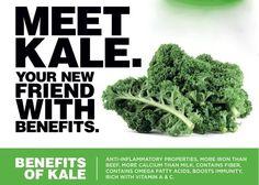 Meet Kale.