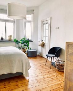 my scandinavian home: A Scandi-inspired Urban Oasis